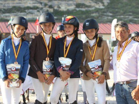 bronce ponis B salto