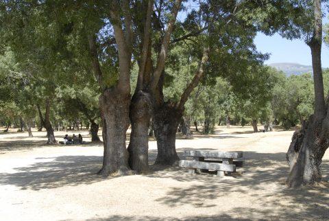 Turismo-SotodelReal-ParquedelRío