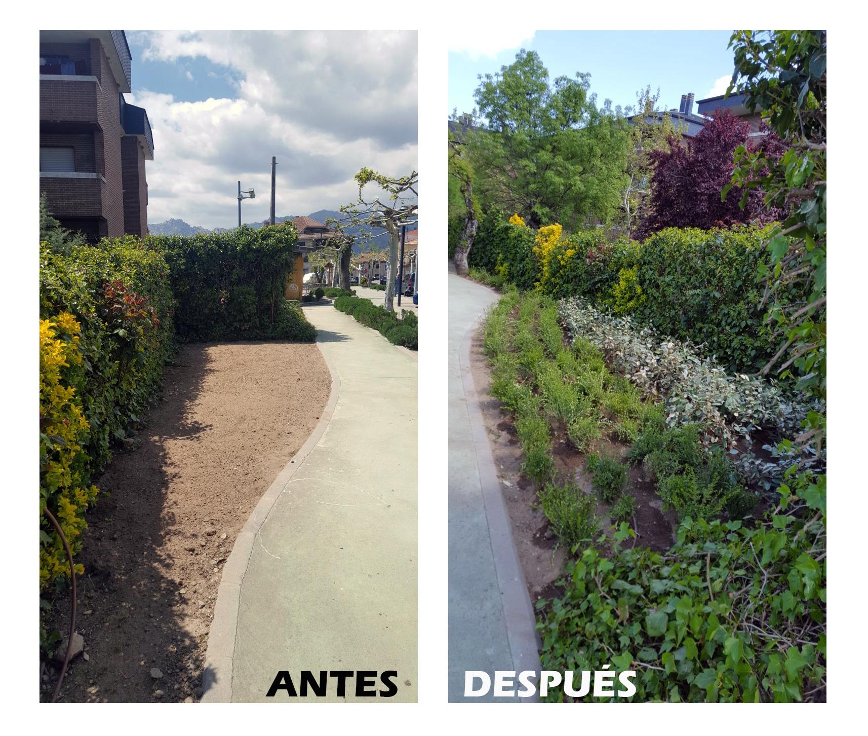 mejoras jardines soto del real