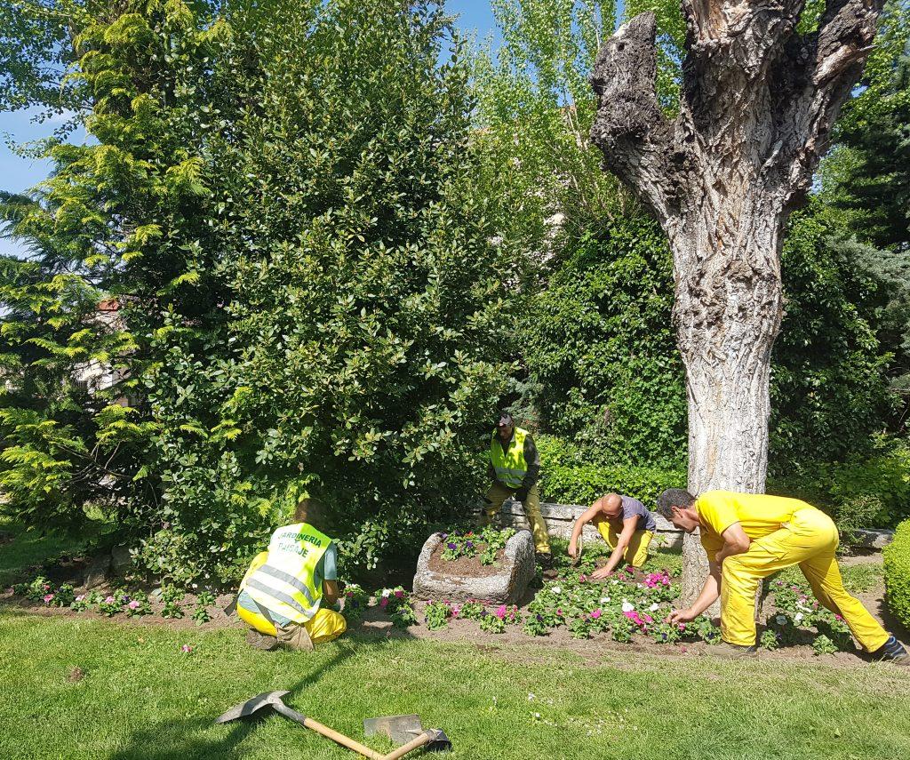 mejoras en jardines soto del real