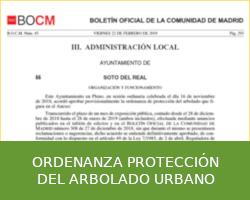 Ordenanza protección del arbolado urbano