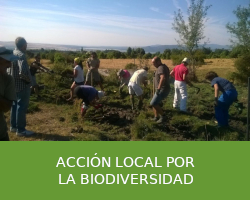 Acción local por la biodiversidad